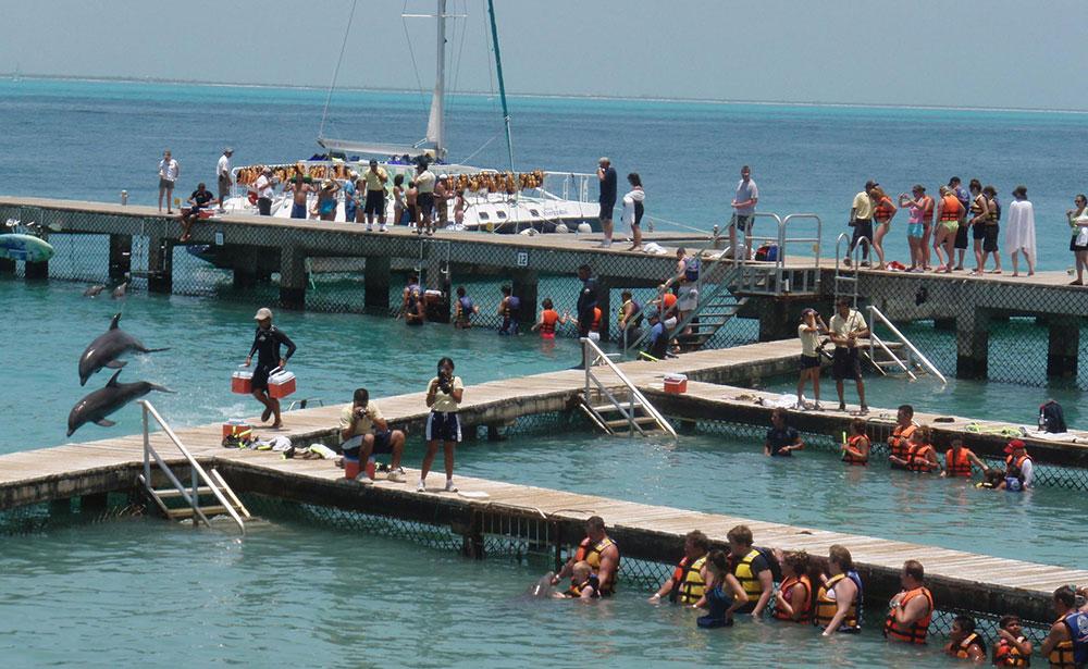 DD Isla Mujeres (c) M Dodds
