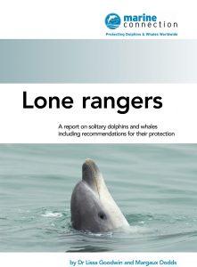 Lone Rangers