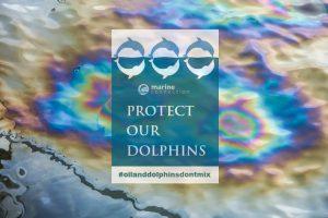 OilandDolphins