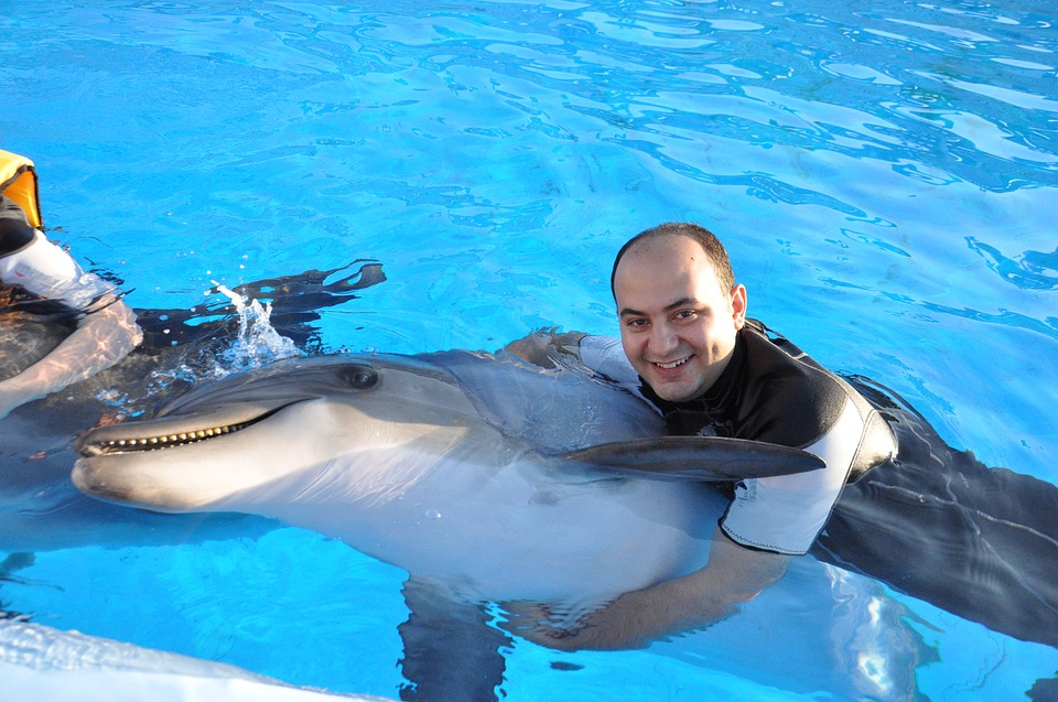 UK travel company drops several dolphin facilities