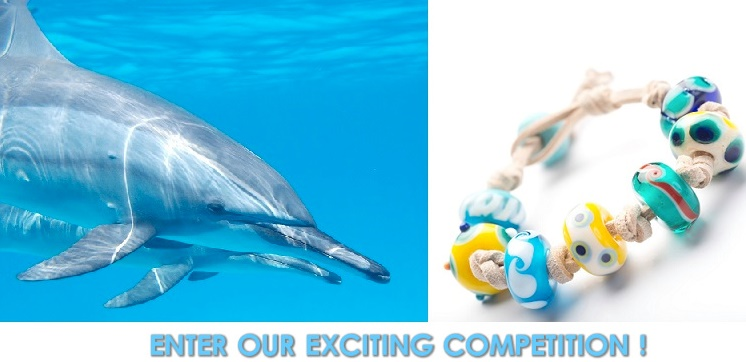 Get creative – be a winner for dolphins and whales