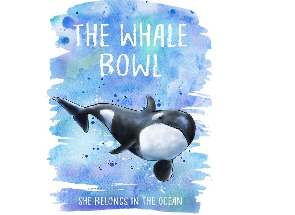 The Whale Bowl – speaking out for Lolita