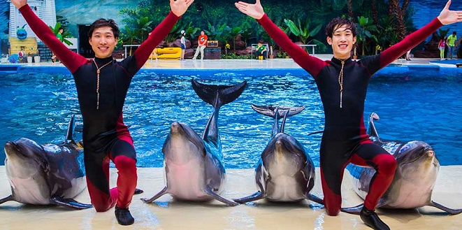 Haichang looking to develop Ocean Parks in Asia and Africa